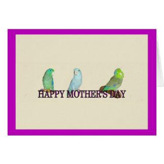 El día de madre de Parrotlet Tarjeta De Felicitación