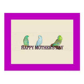 El día de madre de Parrotlet Postal