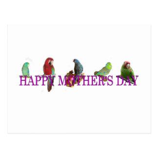 El día de madre del loro postal