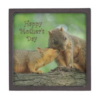El día de madre feliz - ardilla de la mamá y del b cajas de regalo de calidad