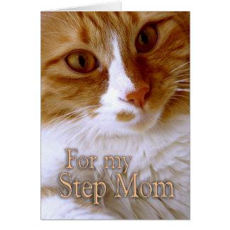 El día de madre feliz - gato del dulce de la mamá tarjeton