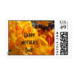 ¡El día de madre feliz! naranja Rhodies de los Sello