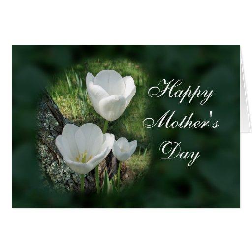 El día de madre feliz: Tulipanes blancos Felicitación