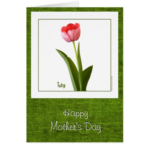 El día de madre feliz - un tulipán rosado tarjeta pequeña