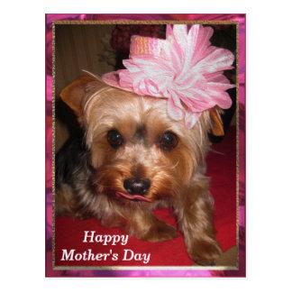 El día de madre feliz Yorkie Postales