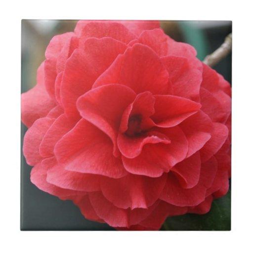 El día de madre rojo floreciente magnífico de la c azulejos cerámicos