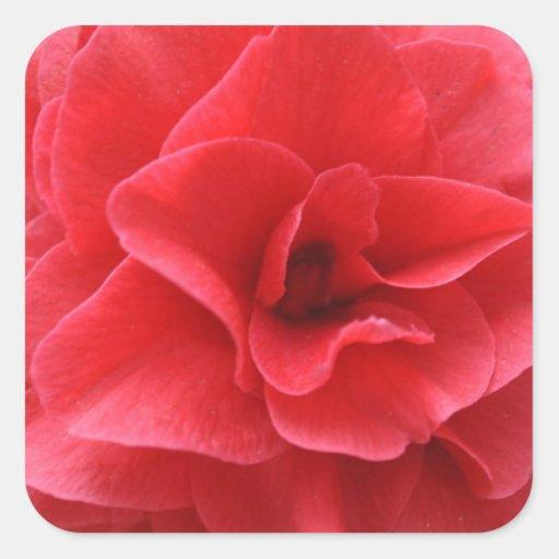 El día de madre rojo floreciente magnífico de la pegatina cuadrada