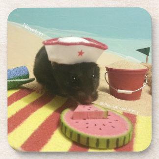 El día de Newton en la playa Posavasos