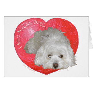 El día de San Valentín de Tulear del algodón Tarjeta De Felicitación
