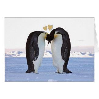 El día de San Valentín dos pingüinos en amor cor Felicitaciones