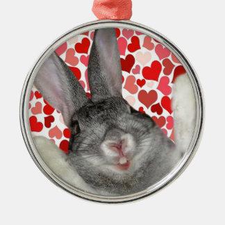 El día de San Valentín feliz DasPoohHay Adornos