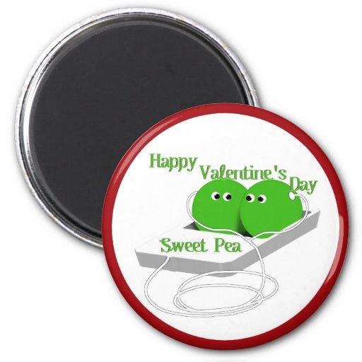 El día de San Valentín feliz, guisante de olor Iman De Nevera