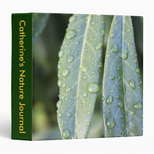 el diario de la naturaleza, hojas verdes, lluvia