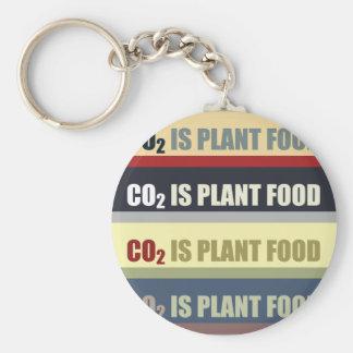 El dióxido de carbono es fortalecedor de plantas llavero