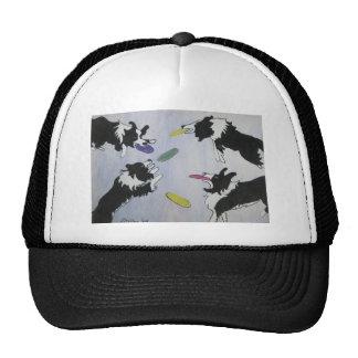 El disco de vuelo persigue el gorra