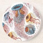 El disco Medusae de Ernst Haeckel Posavasos Cerveza