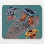 El disco Medusae de Ernst Haeckel Alfombrillas De Raton