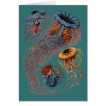 El disco Medusae de Ernst Haeckel Tarjeta De Felicitación