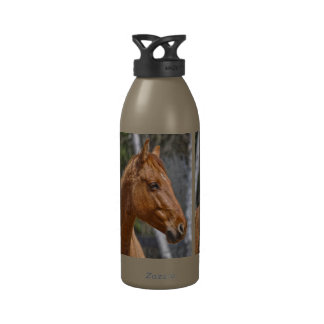El diseño animal equino de los Caballo-amantes Botallas De Agua