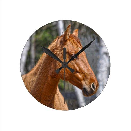 El diseño animal equino de los Caballo-amantes Reloj Redondo Mediano
