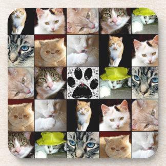 El diverso gato hace frente al collage posavasos
