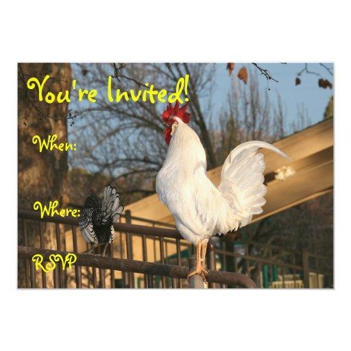 El doble echó a un lado invitación, gallo