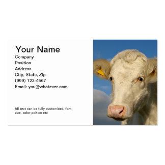 El doble echó a un lado tarjeta de la agricultura plantilla de tarjeta de negocio
