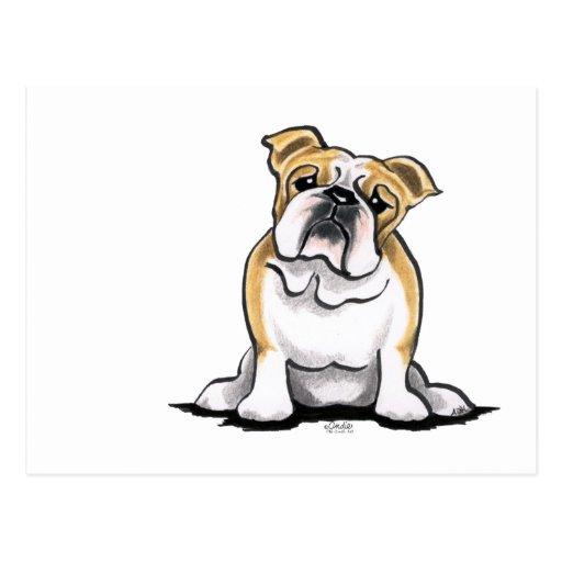 El dogo blanco del cervatillo sienta bonito postales