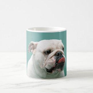 El dogo cara divertida del perro que pega la leng tazas de café