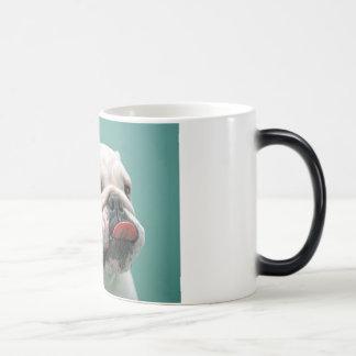 El dogo, cara divertida del perro que pega la leng tazas de café