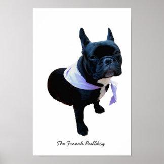 El dogo francés póster
