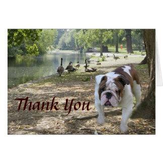 El dogo le agradece cardar tarjeta de felicitación