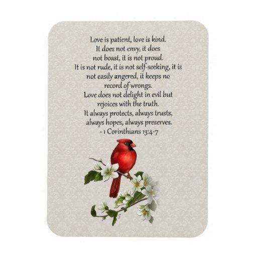el Dogwood rojo del pájaro 3x4 que el amor es amor Imanes