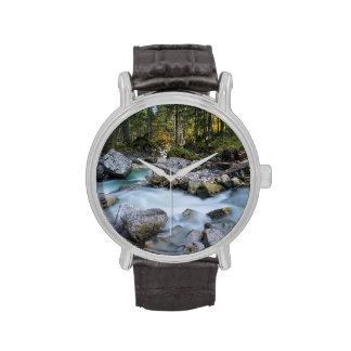 El dolor de Ramsauer del torrente Relojes De Mano