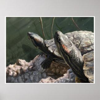 El Dorado Turtles: Sun Bath Posters