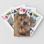 El dormir arrogante del perrito del perro de aguas barajas de cartas