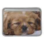 El dormir arrogante del perrito del perro de aguas fundas para macbook air