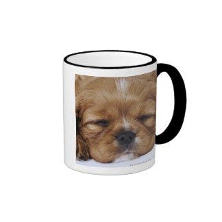 El dormir arrogante del perrito del perro de aguas taza de dos colores