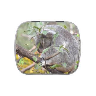 el dormir c de la cabeza de la koala abajo jarrones de dulces