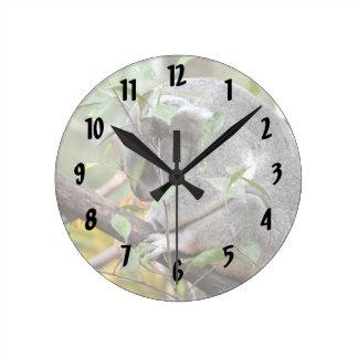 el dormir c de la cabeza de la koala abajo reloj redondo mediano