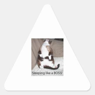 ¡El dormir como Boss! Pegatina Triangular