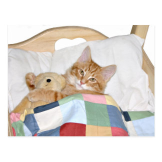 El dormir con el peluche tarjeta postal