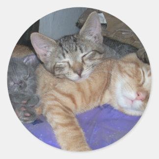el dormir de 3 gatitos pegatina redonda