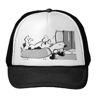 El dormir de Jack Russell Gorros