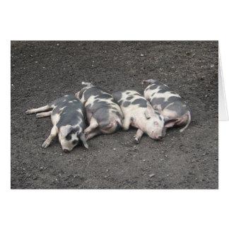 El dormir de los cerdos tarjeta pequeña