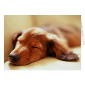 El dormir del Dachshund Tarjeta De Felicitación