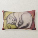 El dormir del gato del vintage almohada