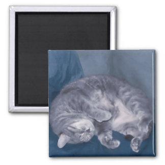 el dormir del gato iman para frigorífico