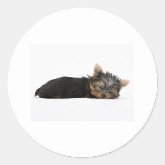 El dormir del perrito de Yorkie Pegatina Redonda