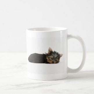 El dormir del perrito de Yorkie Taza De Café